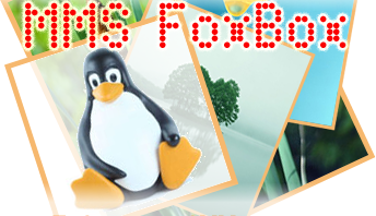 MMS FoxBox - the ultimate Multimedia Messages Hardware server